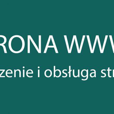 Strony Internetowe WWW Warszawa